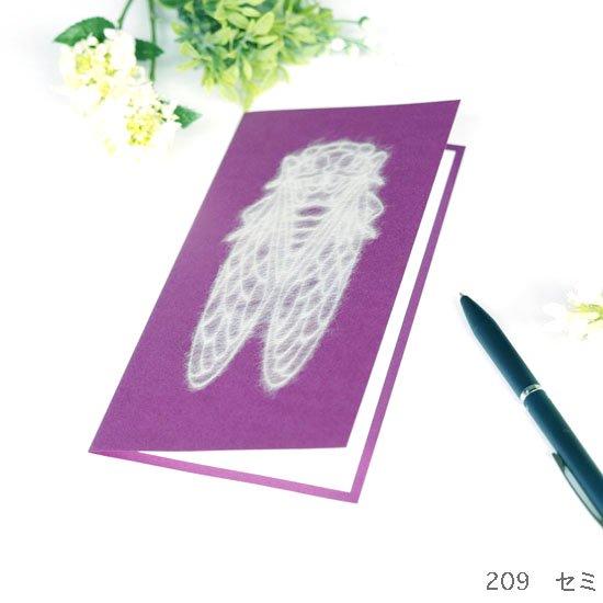 Greeting Card Nature L